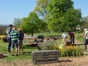 HSA soutient le jardin partagé de la résidence Breuer