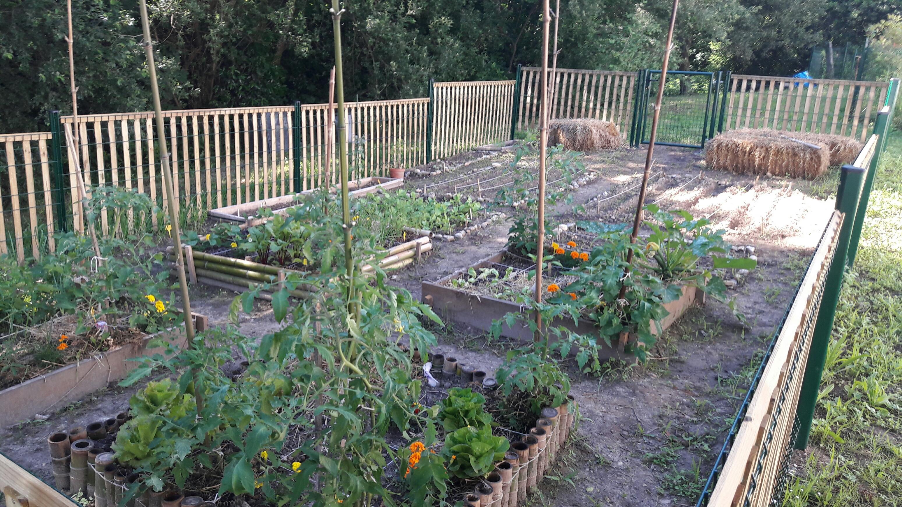 Fabuleux Résidence les Galupes : Création d'un jardin partagé - Habitat Sud  ZD55